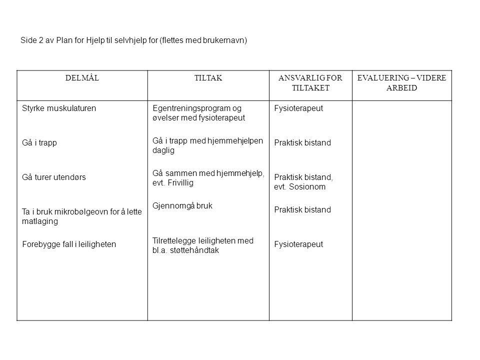Side 2 av Plan for Hjelp til selvhjelp for (flettes med brukernavn)