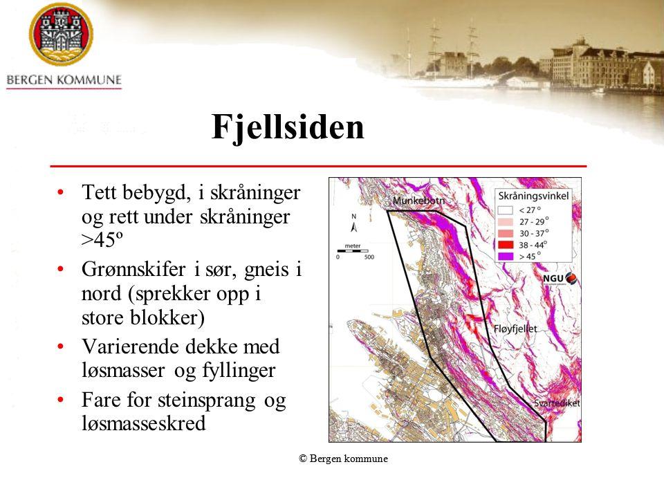Fjellsiden Tett bebygd, i skråninger og rett under skråninger >45º