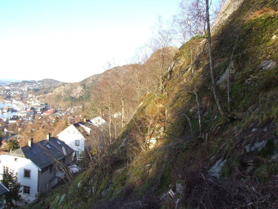 © Bergen kommune © Bergen kommune