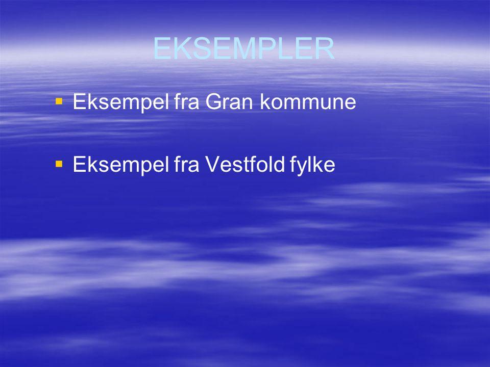 EKSEMPLER Eksempel fra Gran kommune Eksempel fra Vestfold fylke