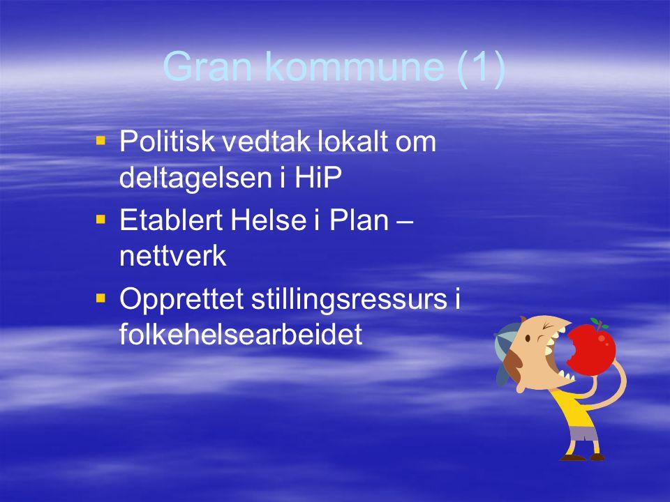 Gran kommune (1) Politisk vedtak lokalt om deltagelsen i HiP