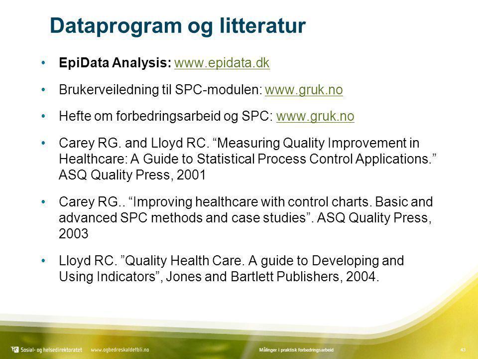 Dataprogram og litteratur