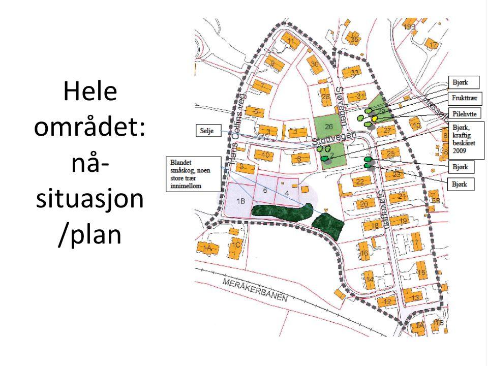 Hele området: nå-situasjon /plan