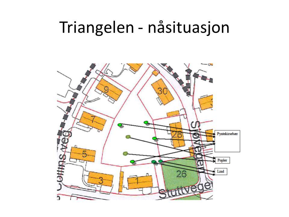 Triangelen - nåsituasjon