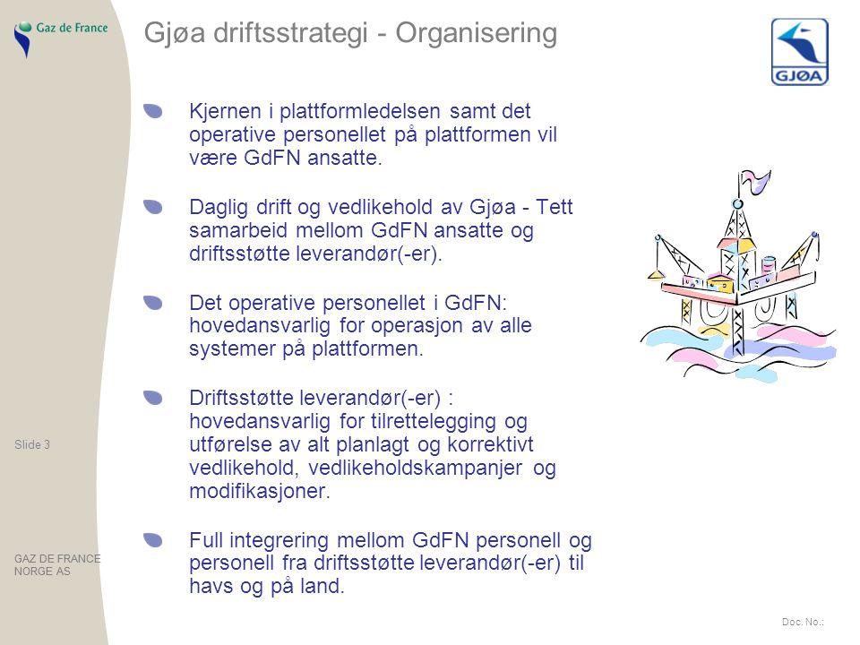Gjøa driftsstrategi - Organisering