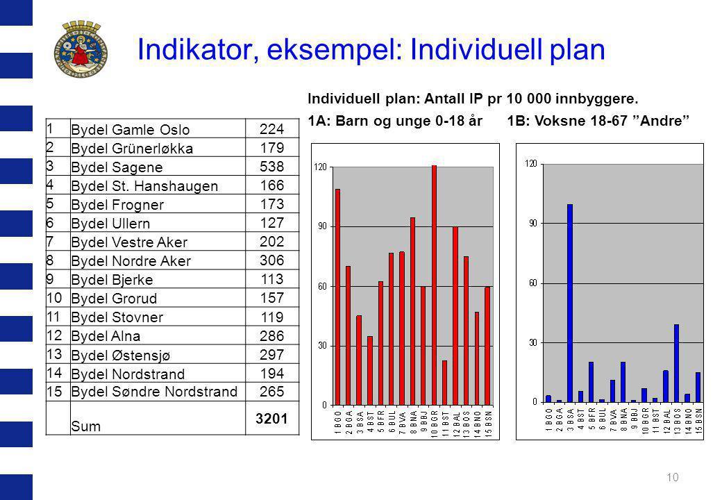 Indikator, eksempel: Individuell plan