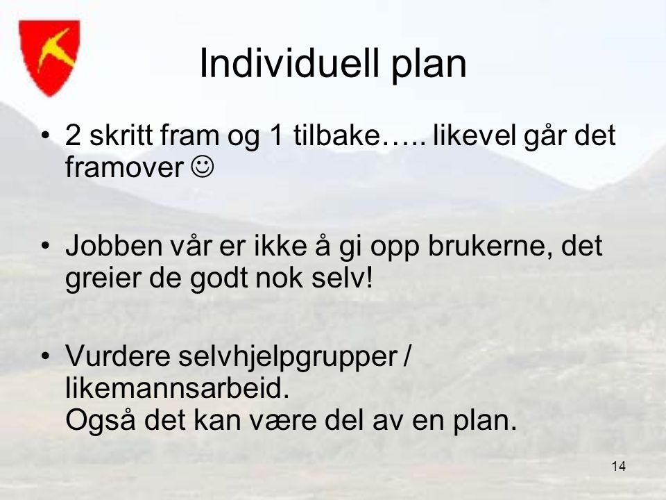 Individuell plan 2 skritt fram og 1 tilbake….. likevel går det framover  Jobben vår er ikke å gi opp brukerne, det greier de godt nok selv!
