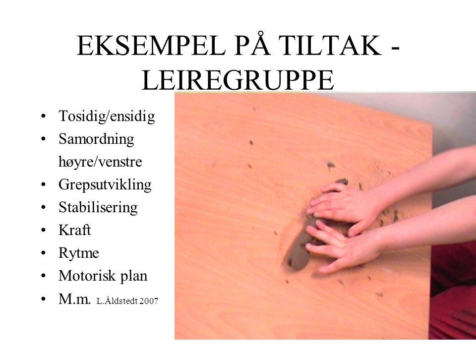 EKSEMPEL PÅ TILTAK - LEIREGRUPPE