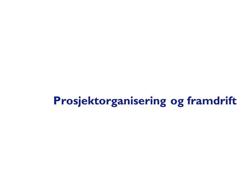 Prosjektorganisering og framdrift