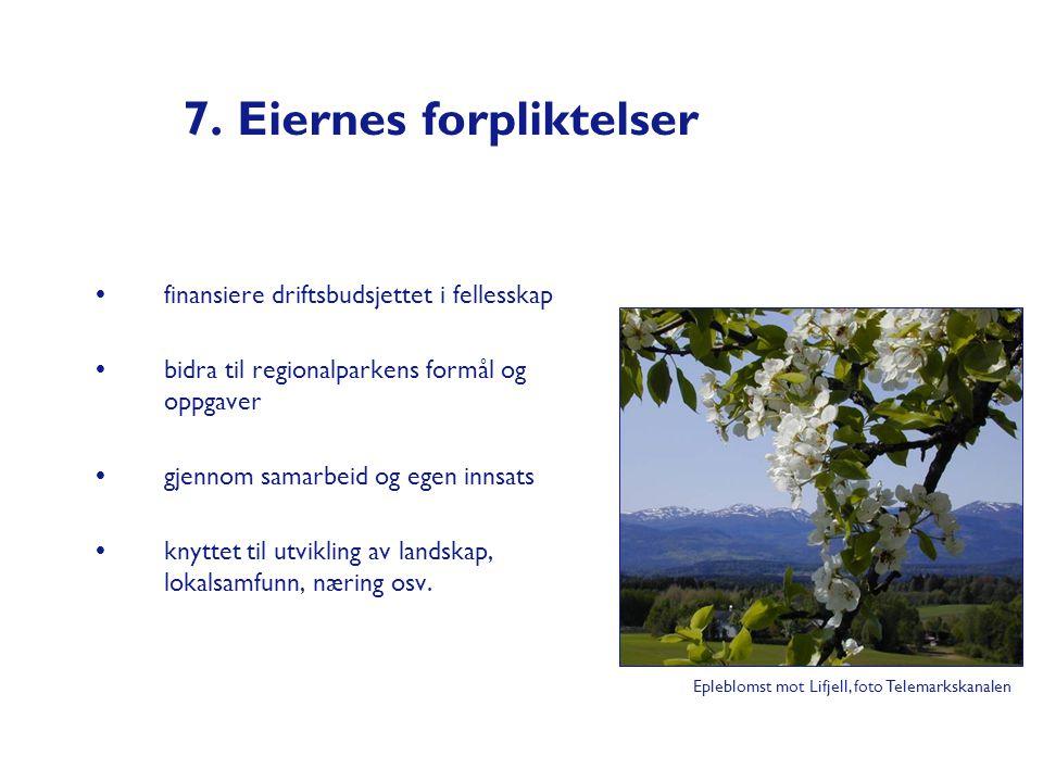 7. Eiernes forpliktelser