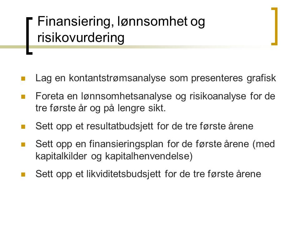 Finansiering, lønnsomhet og risikovurdering