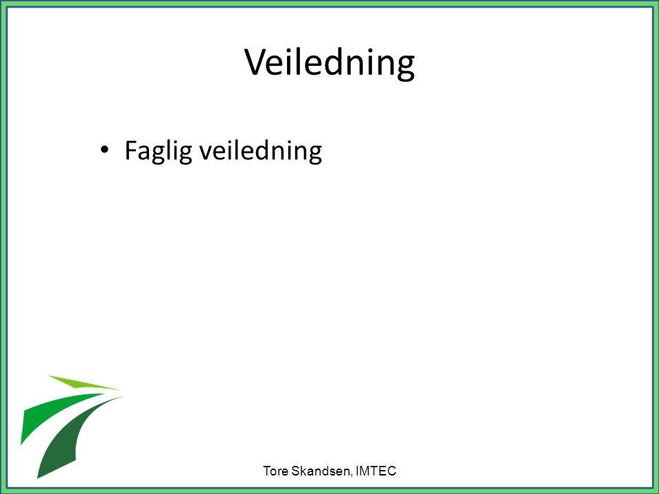 Veiledning Faglig veiledning Tore Skandsen, IMTEC