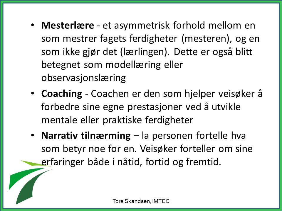 Mesterlære - et asymmetrisk forhold mellom en som mestrer fagets ferdigheter (mesteren), og en som ikke gjør det (lærlingen). Dette er også blitt betegnet som modellæring eller observasjonslæring