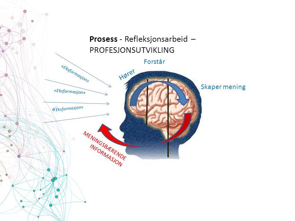Prosess - Refleksjonsarbeid – PROFESJONSUTVIKLING