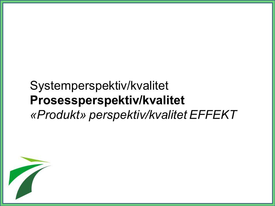 Systemperspektiv/kvalitet