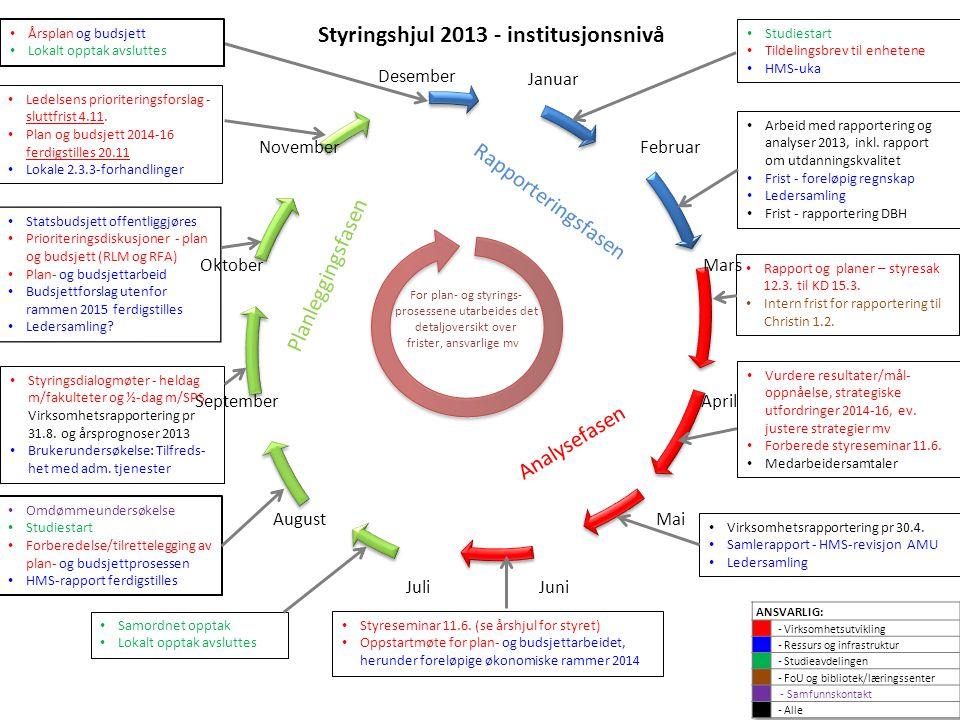 Styringshjul 2013 - institusjonsnivå