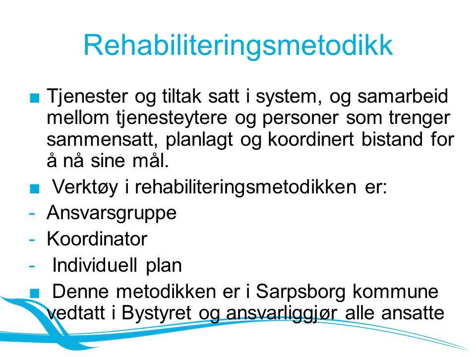 Rehabiliteringsmetodikk