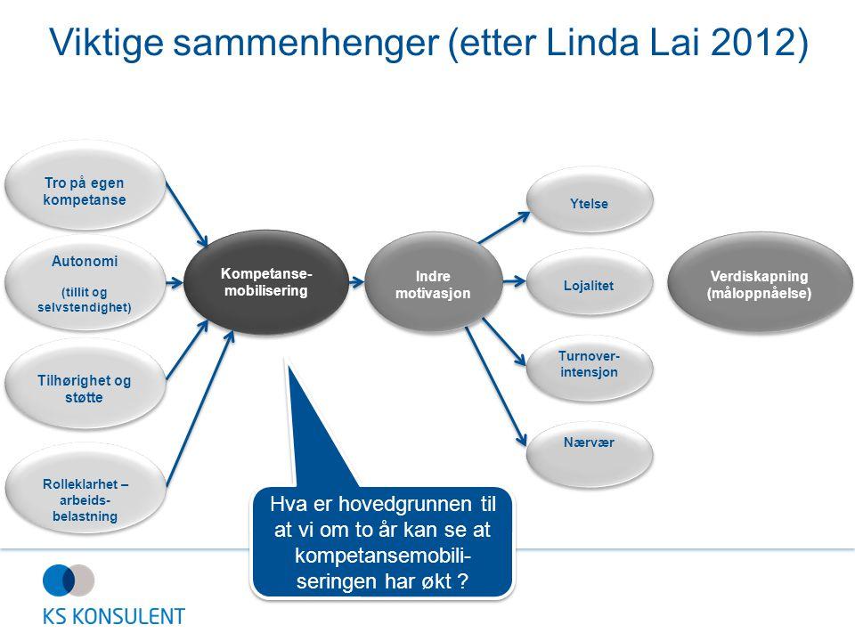 Viktige sammenhenger (etter Linda Lai 2012)