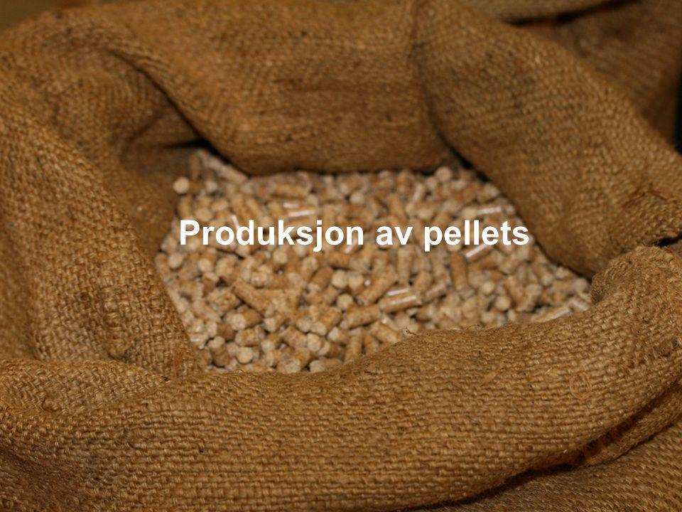 Produksjon av pellets