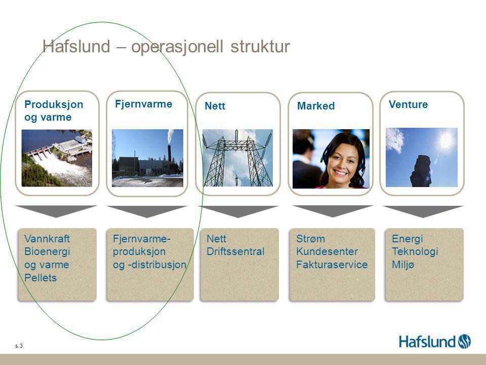 Hafslund – operasjonell struktur