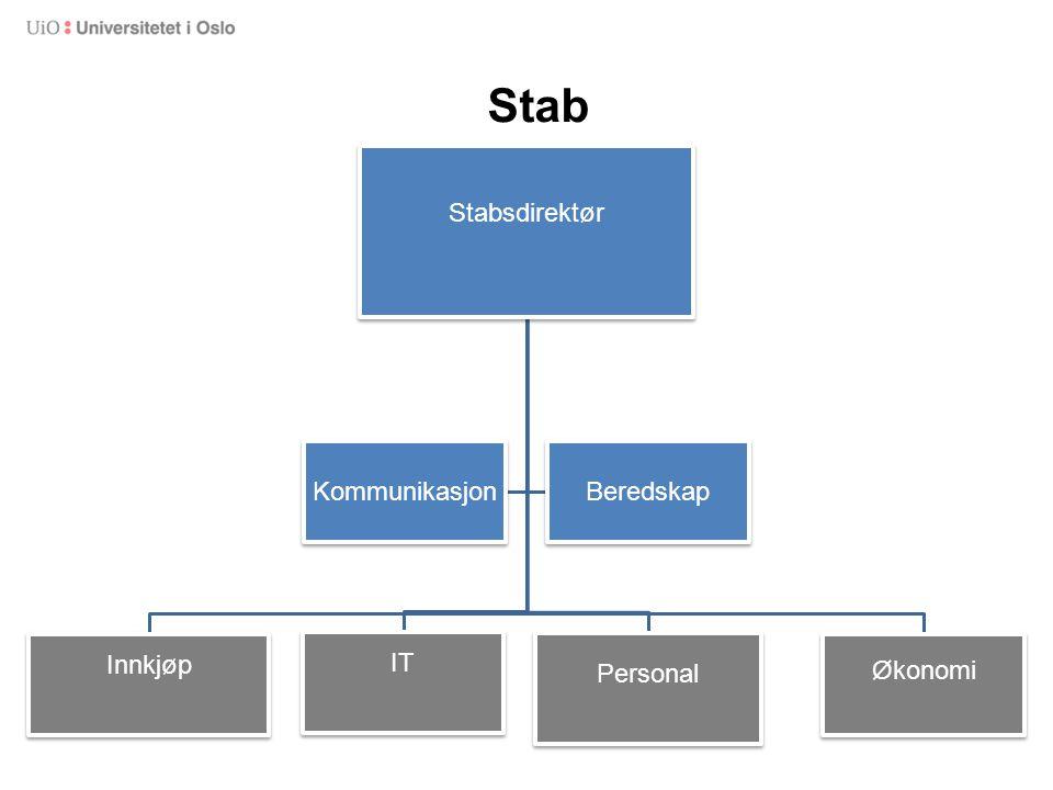 Stab Stabsdirektør Innkjøp IT Personal Økonomi Kommunikasjon Beredskap