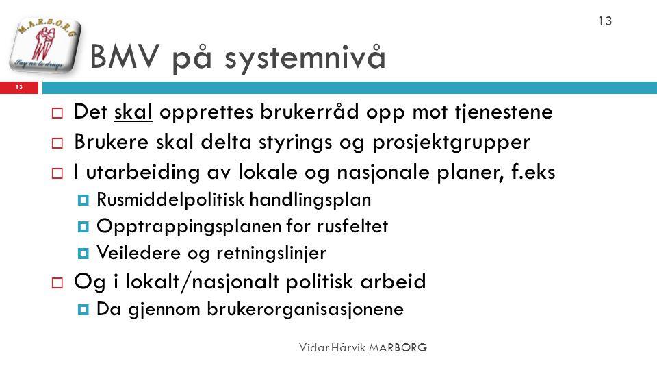 BMV på systemnivå Det skal opprettes brukerråd opp mot tjenestene