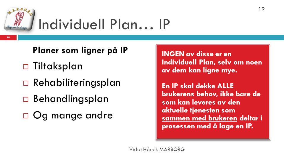 Individuell Plan… IP Tiltaksplan Rehabiliteringsplan Behandlingsplan