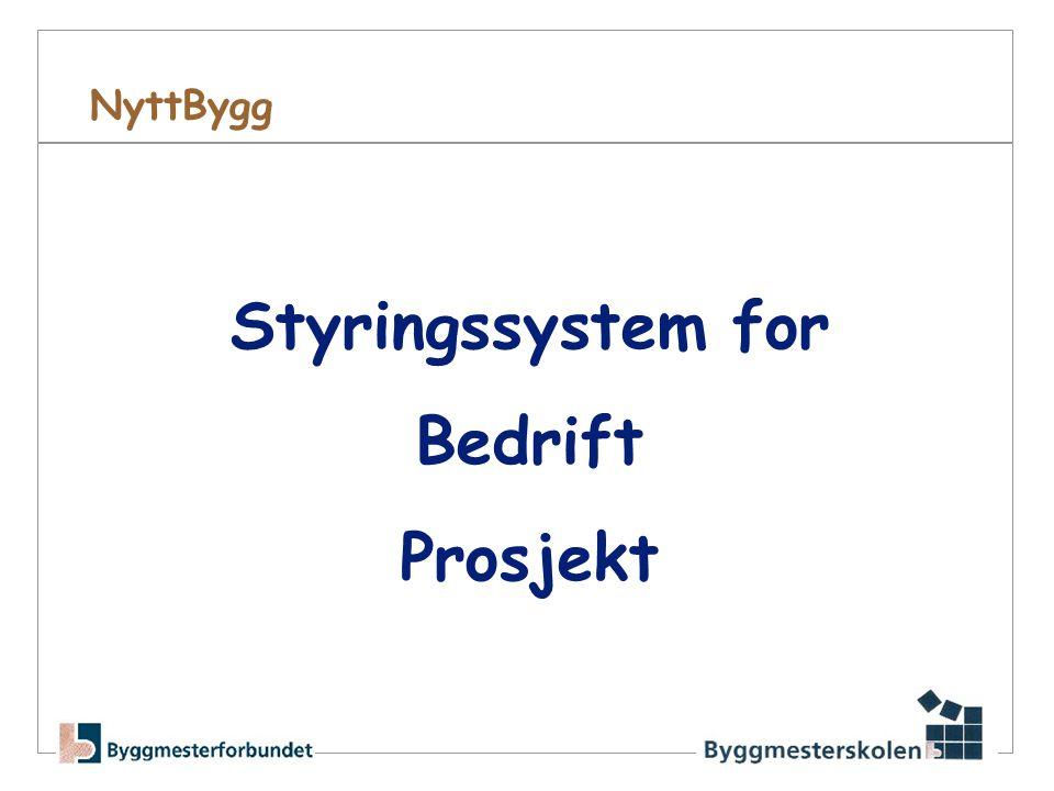 Styringssystem for Bedrift Prosjekt
