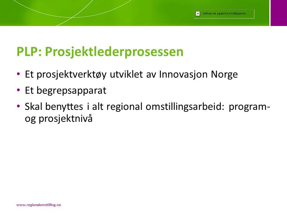 PLP: Prosjektlederprosessen