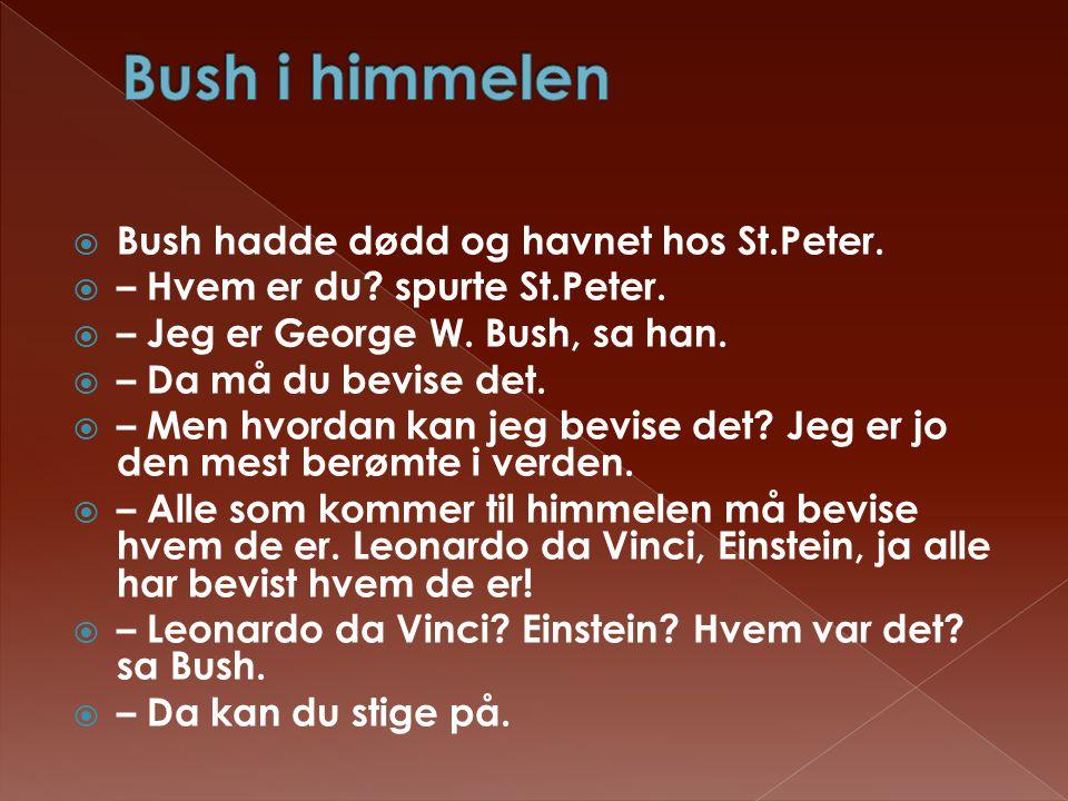 Bush i himmelen Bush hadde dødd og havnet hos St.Peter.