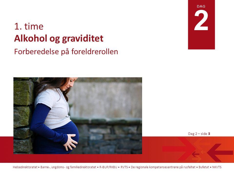 Alkohol og graviditet Forberedelse på foreldrerollen