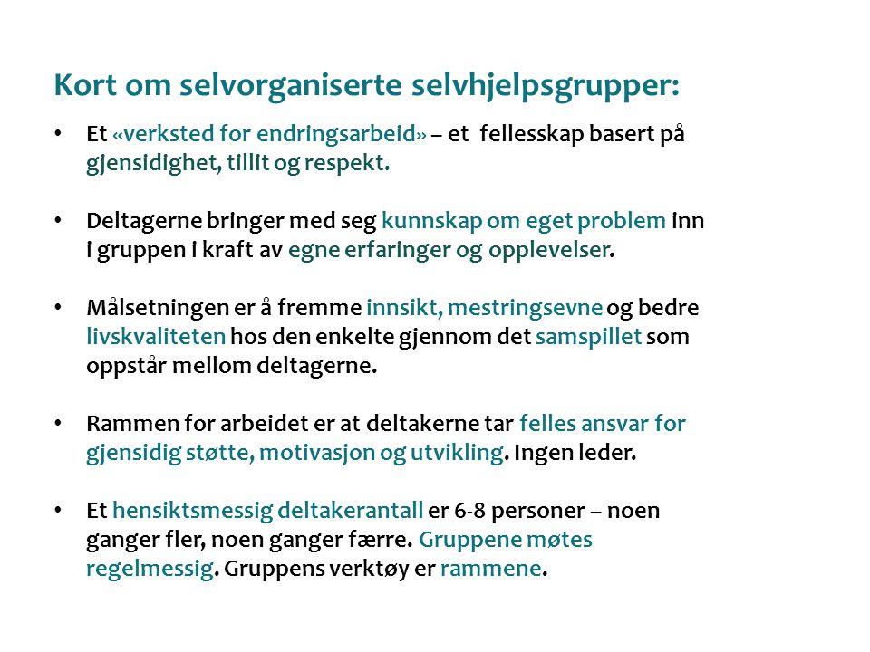 Kort om selvorganiserte selvhjelpsgrupper: