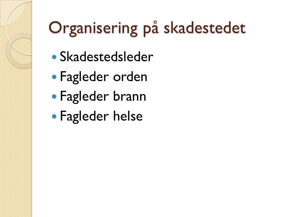 Organisering på skadestedet
