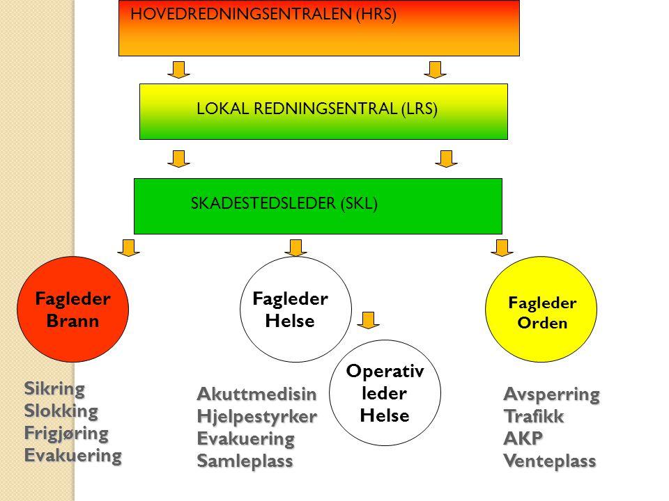 LOKAL REDNINGSENTRAL (LRS)
