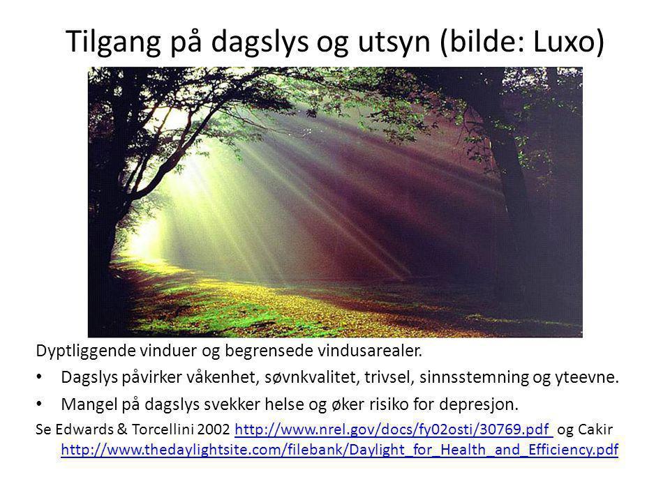 Tilgang på dagslys og utsyn (bilde: Luxo)