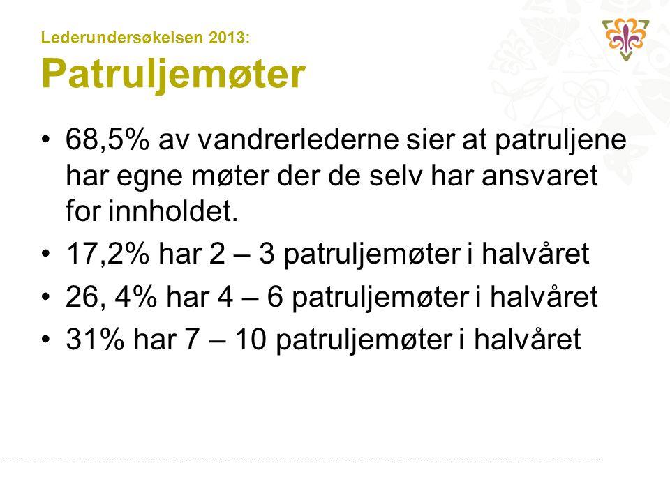 Lederundersøkelsen 2013: Patruljemøter