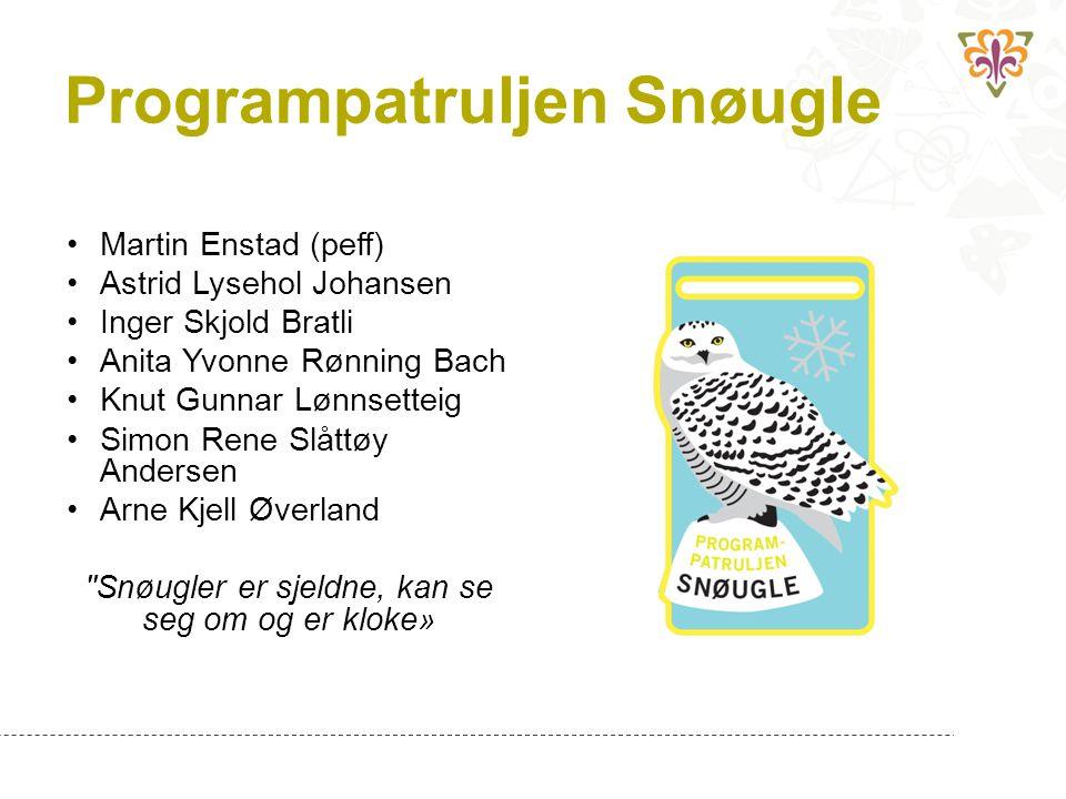 Programpatruljen Snøugle