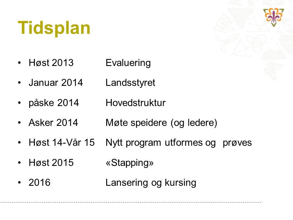 Tidsplan Høst 2013 Evaluering Januar 2014 Landsstyret
