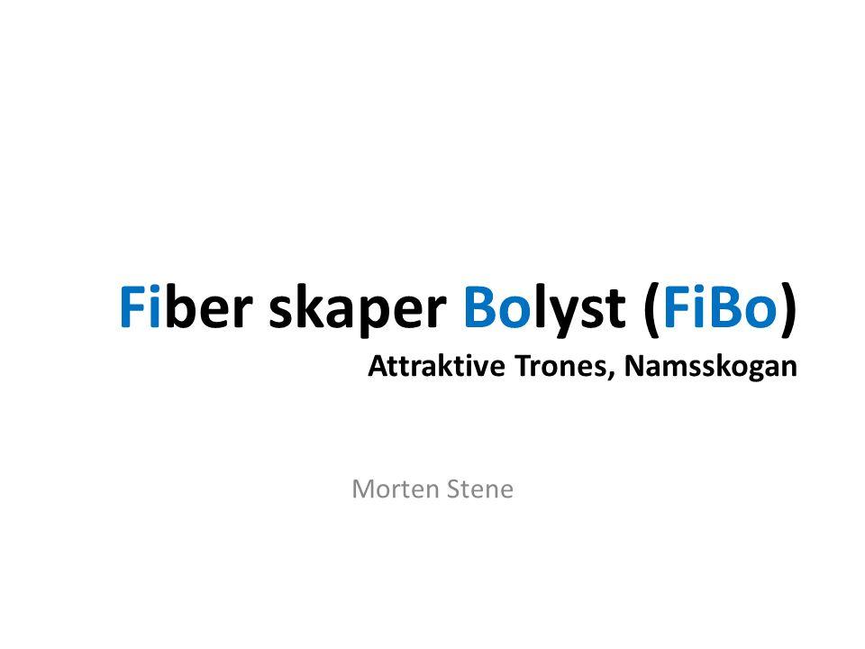 Fiber skaper Bolyst (FiBo) Attraktive Trones, Namsskogan