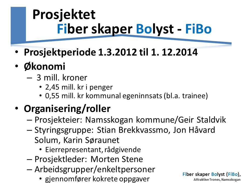 Prosjektet Fiber skaper Bolyst - FiBo