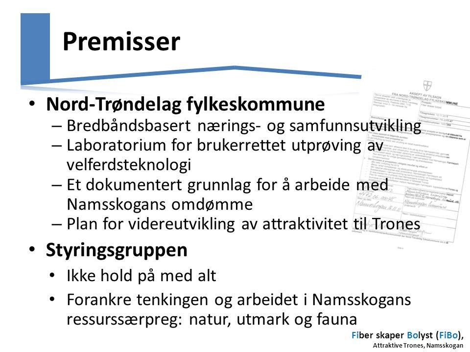 Premisser Nord-Trøndelag fylkeskommune Styringsgruppen