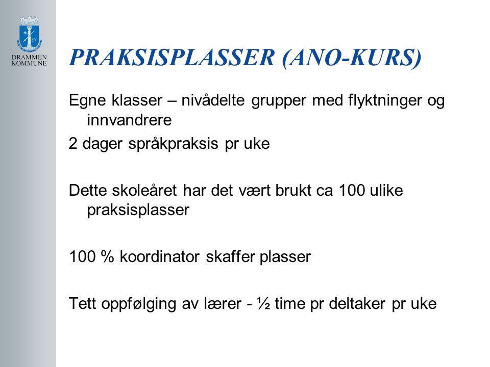 PRAKSISPLASSER (ANO-KURS)