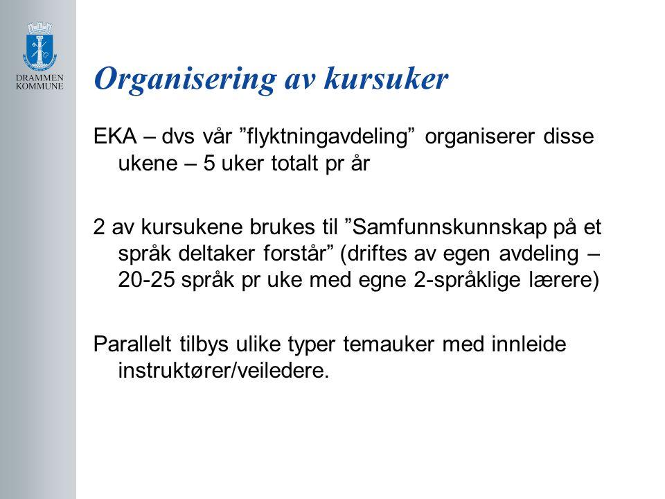 Organisering av kursuker