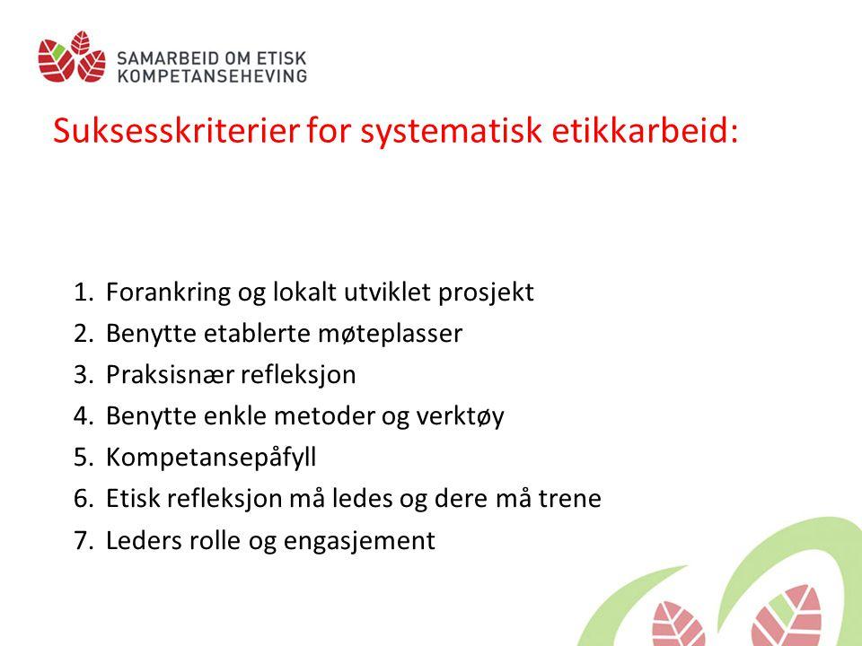 Suksesskriterier for systematisk etikkarbeid: