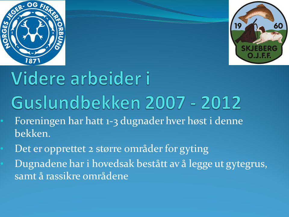 Videre arbeider i Guslundbekken 2007 - 2012
