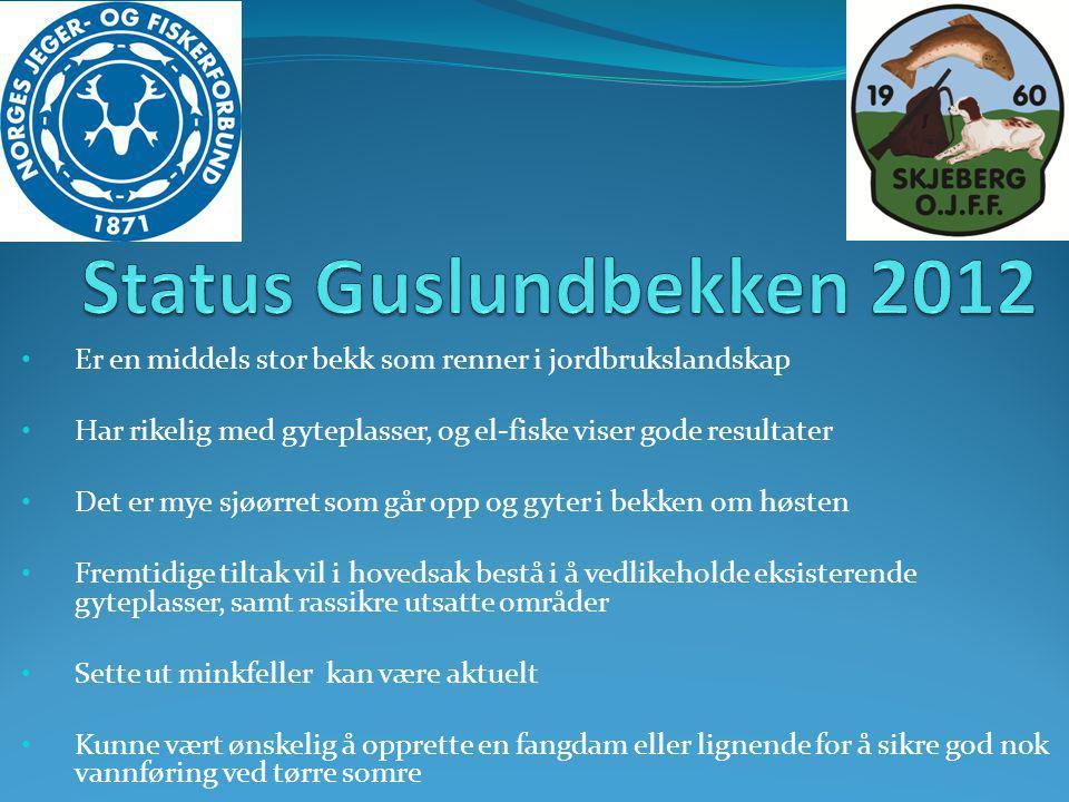 Status Guslundbekken 2012 Er en middels stor bekk som renner i jordbrukslandskap. Har rikelig med gyteplasser, og el-fiske viser gode resultater.