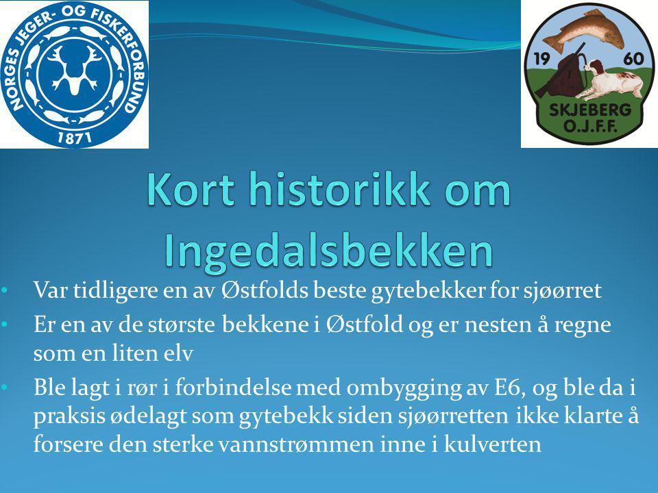 Kort historikk om Ingedalsbekken