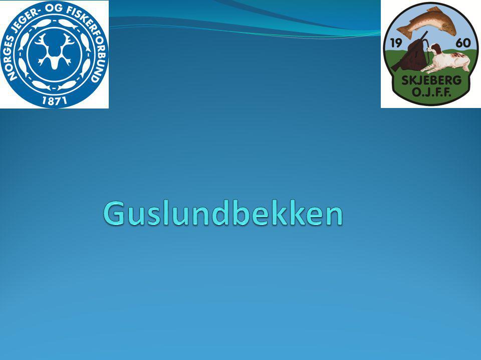Guslundbekken