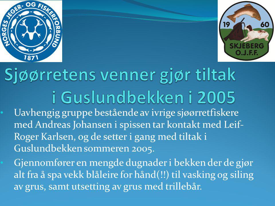 Sjøørretens venner gjør tiltak i Guslundbekken i 2005