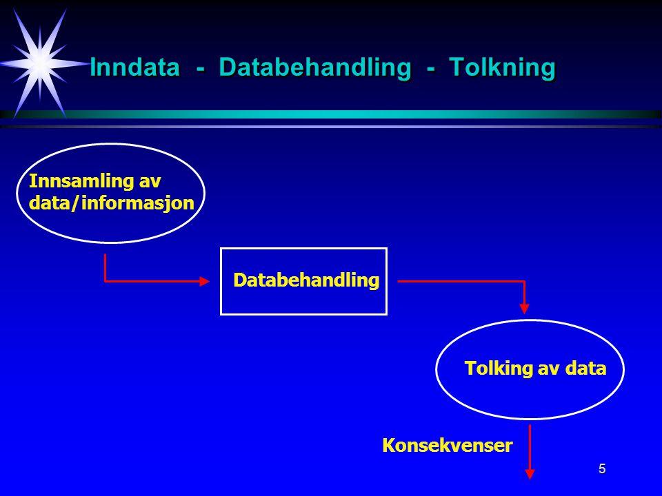 Inndata - Databehandling - Tolkning